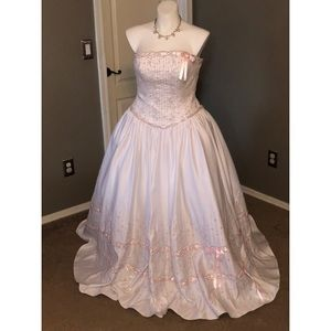 ✨Mary's Bridal Dress